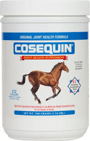 Cosequin Equine Concentrate Joint Supplement For Horses