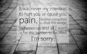 Am Sorry Quotes