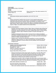 Professional Resume Writers Best Template Collection Resume
