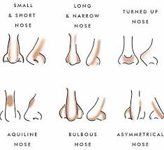Nose Contouring Chart En 2019 Maquillage Maquillage Teint