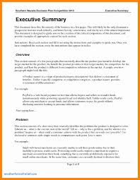 Microstrategy Architect Sample Resume Template for Summary Report Cool Executive Summary format Example 1