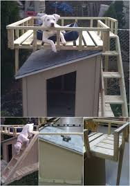 Brilliant DIY Dog Houses With Free Plans For Your Furry    Fit for a King   Brilliant DIY Dog Houses With Free Plans For Your Furry