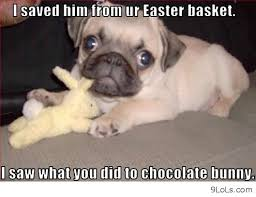 funny pics, funny quotes, funny easter, derp and - image #675936 ... via Relatably.com