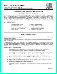 Bunch Ideas Of Interesting Resume Examples Construction Fancy