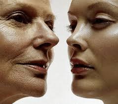 Beauty Collagen Premium Doppelherz của Đức có tốt không?Giá bao nhiêu? – Mua thuốc tiết kiệm - Minh Minh Pharmacy, HH4B Linh Đàm, quận Hoàng Mai, Hà Nội