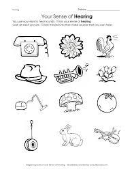 15 best 5 senses images on Pinterest | 5 senses activities, Day ...