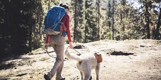 woman backng with dog carrying saddle bags