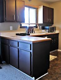 kitchens with dark painted cabinets. walnut wood espresso lasalle door painting kitchen cabinets black backsplash mosaic tile porcelain countertops sink faucet island lighting flooring kitchens with dark painted p