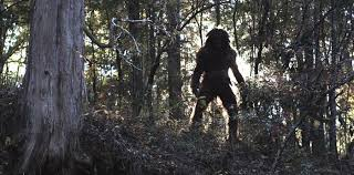 Image result for Clawed The Legend Of Sasquatch (2005)