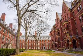 Image result for Harvard yard
