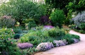 Small Picture Drought Resistant Landscape