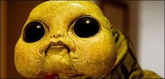 cbbc newsround do aliens really exist  do aliens really exist an alien