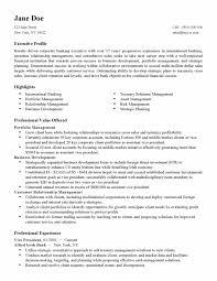 Resume Writers Nyc Updated Professional Resume Writers New York City