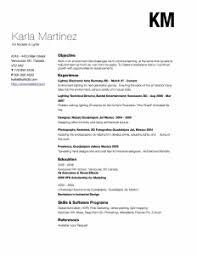 beautiful resume ideas that work   jobmobkarla martinez resume