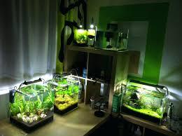 Aquascape Fish Tank Charming Creative Fish Tanks Creative Fish Tanks Best  Fish Appartment Aquascaping Your Fish