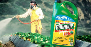 how to protect yourself against monsanto s cancer causing roundup