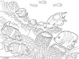 海の熱帯魚の塗り絵の下絵画像