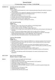 Net Developer Resume Sample AspNET Developer Resume Samples Velvet Jobs 4