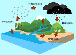 the water cyclewater cycle