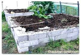 cinder block garden bed cinder block raised garden concrete block raised bed building raised garden beds