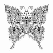 Kleurplaat Vlinder Mooi Populair Kleurplaten Voor Volwassenen