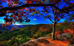 autumn mountains backgrounds. Full Screen Fall Wallpaper Wide Autumn Mountains Backgrounds