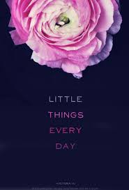 Lulu Quotes Adorable Happy Quotes Little Things Every Day Motivational Quotes