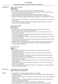 Care Manager Resume Example Templates Case Social Services