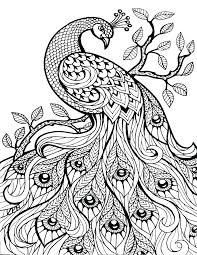 Free Printable Animal Coloring Pages For Adults At Getdrawingscom