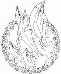 Small Picture Realistic Bottlenose Dolphin Coloring Pages for adults Enjoy