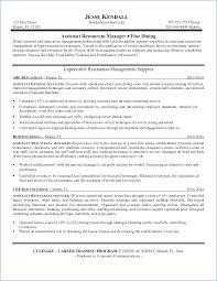 Director Of Sales Resume Igniteresumes Com