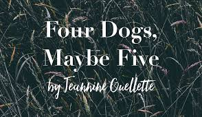 Proximity Four Dogs Maybe Five by Jeannine Ouellette Proximity