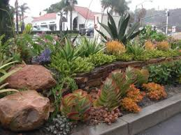 Small Picture 7 front yard gardens called San Clementes best Rock garden