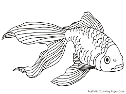 Small Picture Realistic Ocean Fish Coloring Pages Coloring Coloring Pages