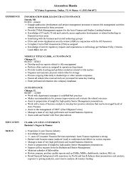 Auto Finance Resume Samples Velvet Jobs