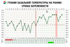 Basal Temperature During Pregnancy In The Early Stages