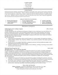 Professional Resume Writing Service Resume Samples