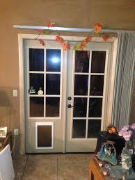 medium size of petsafe sliding glass door installation pet door guys can you put a dog