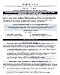business technology sample technology resume
