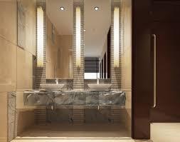 Long Bathroom Light Fixtures Astounding Vertical Bathroom Lights Lit With A Long Tube