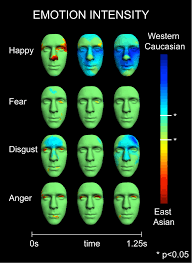 Understanding The Face As A Dynamic Communication Tool Emotion