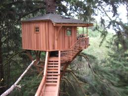 Tree House Master Pete Nelson  TV SHOWS  Pinterest  Tree HousesTreehouse Builder Pete Nelson