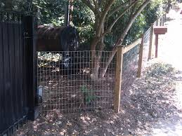 wire farm fence. Wire-Fence-Woven-Mesh-with-Wood-Posts Wire Farm Fence E