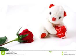 white teddy bears with hearts and roses. Simple White White Teddy Bear And Red Rose Intended Bears With Hearts And Roses A