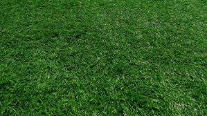 artificial turf field. Play Preview Video Artificial Turf Field T