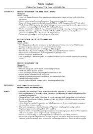 promotional resume sample promotions director resume samples velvet jobs