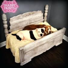 pets furniture. Best Furniture For Pets Dog Bed Images On And Pet Crates