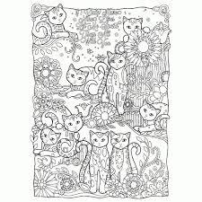 Grappig Katje Boek Kleurplaten Voor Volwassenen Zentangle Kat