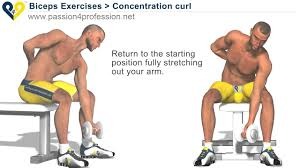 Bodybuilding Exercises Chart Free Download Bodybuilding Exercises Free Weights