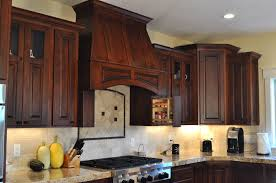 Microwave In Kitchen Cabinet Kitchen Cabinet Range Hood Design Cute Oven Vent 5 With Microwave